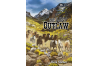 THE LAST OUTLAW ~ RICK STEBER